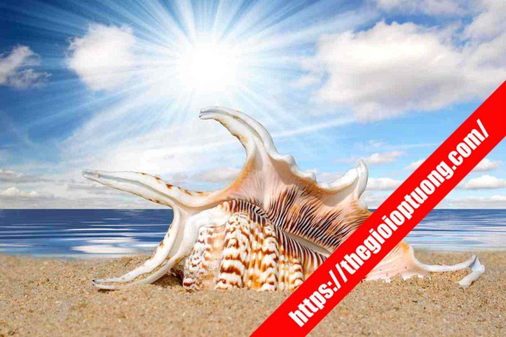 TRANH TƯỜNG CẢNH BIỂN / THÁC NƯỚC MÃ B001 . Tranh dán tường cảnh biển - Tranh tường 3D đẹp biển hồ