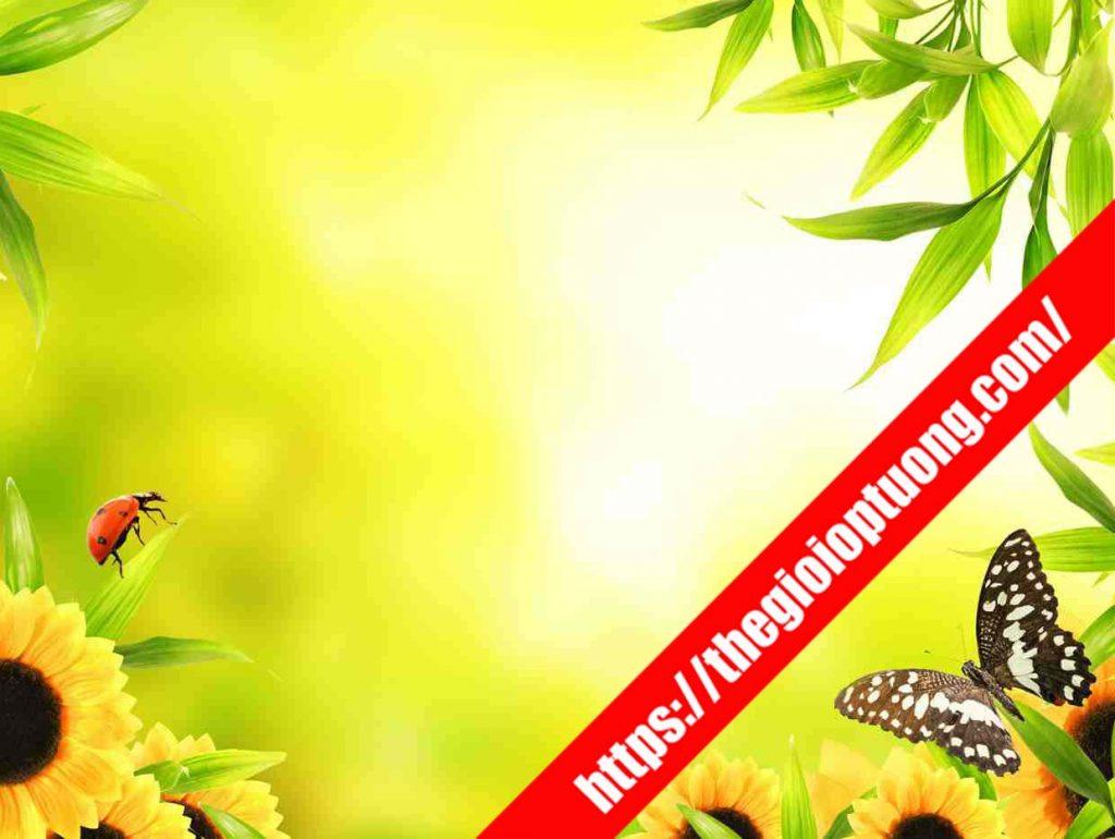 TRANH TƯỜNG THIÊN NHIÊN 3D MÃ FL016. Tranh dán tường thiên nhiên 3D - Tranh tường nhà ở, quán cafe