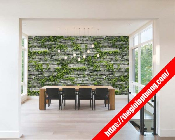 Decal dán tường đẹp, Mẫu decal tường được ưa chuộng nhiều nhất