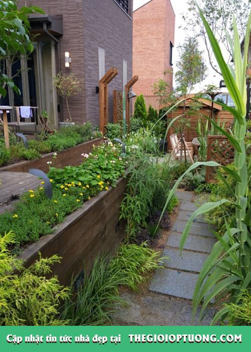 Không gian sân vườn đẹp mê mẩn sau khi cải tạo