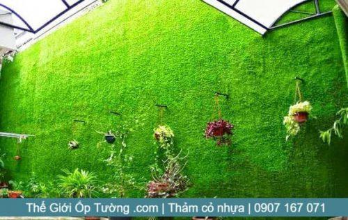 Đại lý cung cấp thảm cỏ treo tường giá tốt tại Tphcm, Mỹ Tho