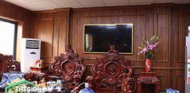 Ốp tường giả gỗ phòng khách sang trọng tiết kiệm
