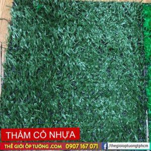 thảm cỏ nhân tạo tphcm mỹ tho tiền giang