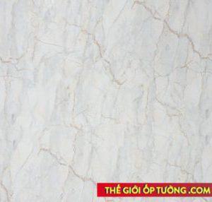 thi công tấm ốp tường pvc giả gỗ giả đá hoa cương tphcm mỹ tho tiền giang
