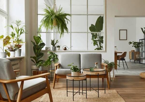 Top 10 phong cách trang trí mới nhất theo xu hướng; thiết kế phòng khách theo xu hướng thiên nhiên